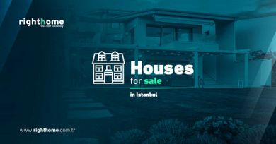 Houses for sale in Istanbul